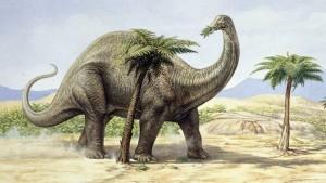 recenti_studi_dinosauri_puzzette